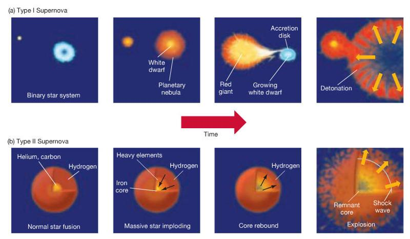 types of nucleosynthesis Big bang nucleosynthesis produced no elements heavier than lithium to do that you need stars  in the starlight from certain types of stars.
