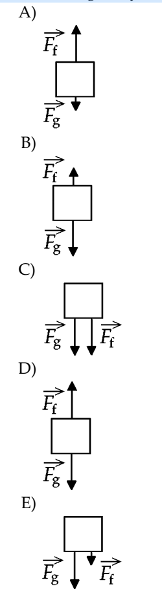 8) which one of the following free-body diagrams best represents the free-body  diagram, with correct relative force magnitudes, of a person in an elevator