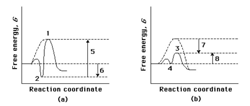 Which option best describes a correlation