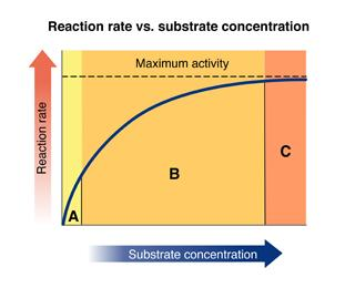 What is your best option for increasing the rate of the reaction