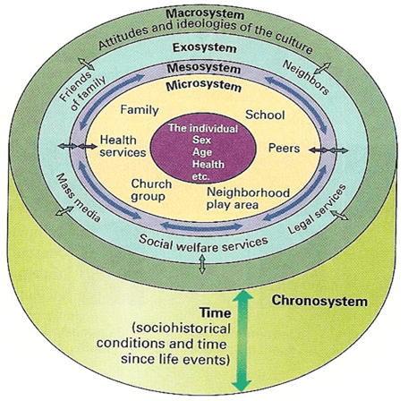 strengths and weaknesses of nightingale s environmental theory Strength and limitations by: however, this may lead to development of emotional attachment to patients which may be a weakness of the theory there are limited explanations regarding the concepts of a person, man, environment and nursing.