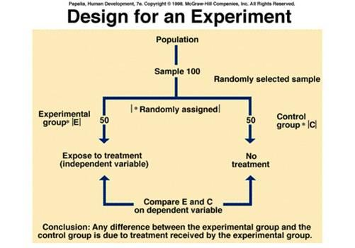 experimental food science exam1 The study of analytical, biochemical, physical, nutritional, and toxicological aspects of foods is known as food chemistry it also deals with food processing techniques and methods to enhance or to prevent them from happening.