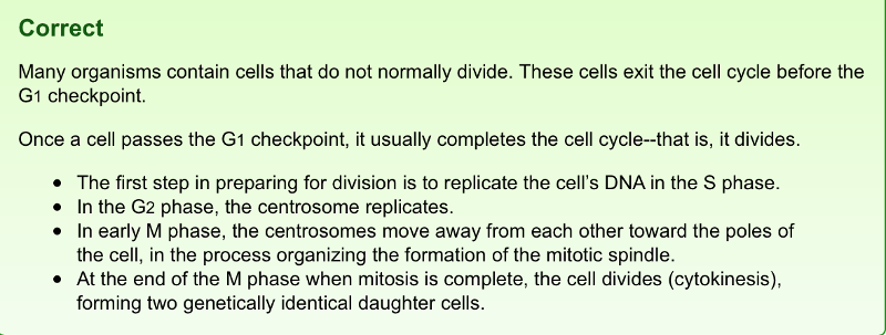 Mastering Biology Chapter 12 Mitosis Flashcards – Cell Cycle and Mitosis Worksheet Answer Key