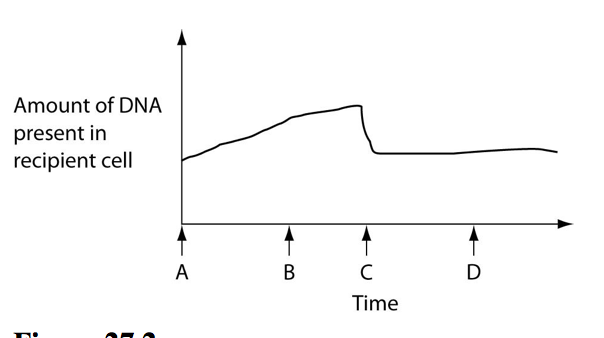 In a hypothetical situation the genes for sex pilus