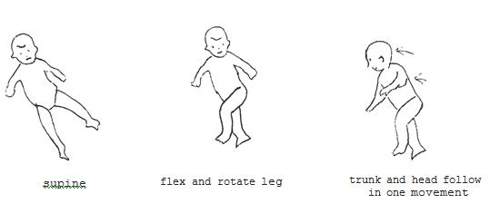 Body Righting Reflex Neonatal Body Righting