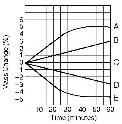 osmosis various sucrose concentrations The rate of osmosis increases with the concentration gradient  sucrose, and iodine to test  the student will investigate the process of osmosis and the effects.
