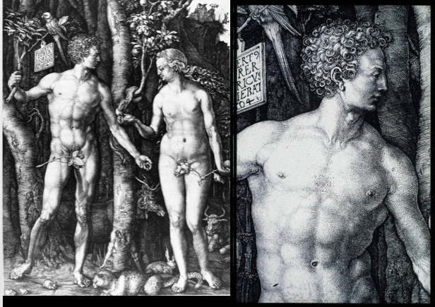 Study of a nude man canvas print