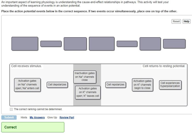 Focus Figure 11.11 - Action Potential - Neurophysiology Activities ...